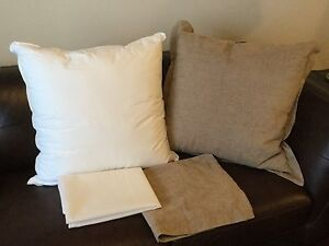 Two 65cm square cushions: as new condition West Perth Perth City Area Preview