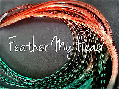 """Whiting Ombre Tie Dye Multi Colored Feather Hair Extension 7""""-9"""" Long LOTA"""