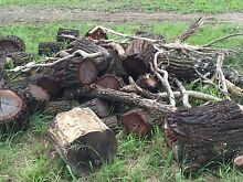Free Firewood Castlereagh Penrith Area Preview