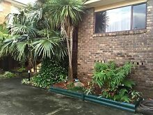 Lovely house to share with a easy going person :-) Umina Beach Gosford Area Preview