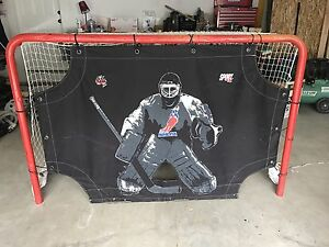 Road hockey net for sale