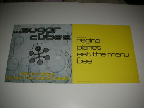 SUGAR CUBES Here Today... Bjork 2 Sided Promo 12x12 Poster Flat 1989 Mint-