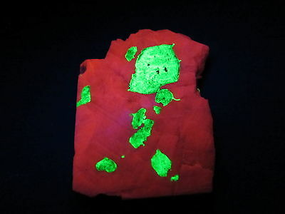 Calcite with Willemite Specimens-The worlds most Fluorescent!