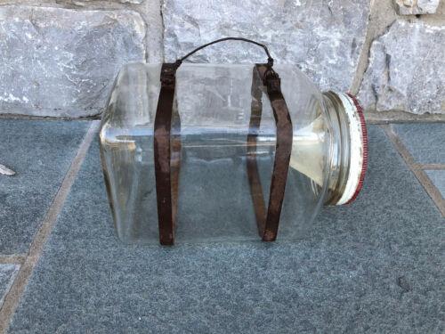 Square Antique Vintage Glass Jar Minnow Fishing Fish Bait Roach Trap Lake Box
