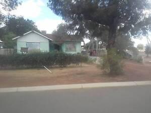 3 x 1 house on a large corner block in Quairading  URGENT SALE Quairading Quairading Area Preview