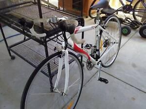 ladies racing cycle $200