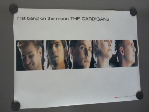 The Cardigans Double Sided 1996 LP Record Album CD 18x24 Promo Poster