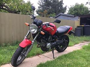 Honda VTR250 - Perfect Condition Unley Unley Area Preview