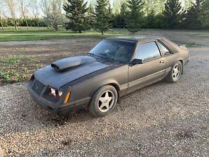 1983 Mustang GT  5.0