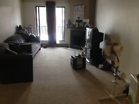 Female looking for female roommate