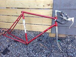 Steel Roadbike frame and fork.