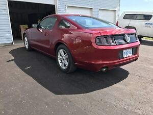 2014 Mustang for sale, lowest price, & mileage on Kijiji