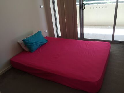 MASTER BEDROOM IN WESTMEAD CLOSE TO ALL AMENITIES Westmead Parramatta Area Preview