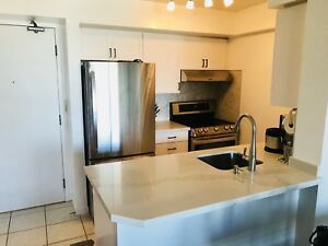 Newly Renovated 1 Bedroom with Parking/Locker - Move in ready!