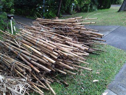 Bamboo Stacks Oatley Hurstville Area Preview