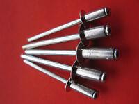 Pop Rivets / Blind Rivets: 4.0mm & 4.8mm. Five Sizes, 100 In Total - bralo / fabory - ebay.co.uk