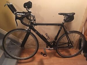 Cannondale Multisport 1000