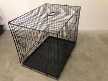 Dog Crate M Broadbeach Waters Gold Coast City Preview
