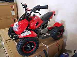 50cc quad bike brand new in box Aratula Ipswich South Preview