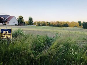 Beautiful 1/2 acre Lots for Sale along St.Clair Parkway