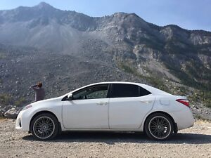 2015 Toyota Corolla - TRD Wheels and Performance Exhaust