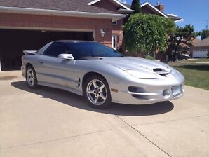 2000 Silver Firebird Trans Am WS6