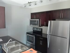 1025 sq ft new condo in South Terwillager 1200/month