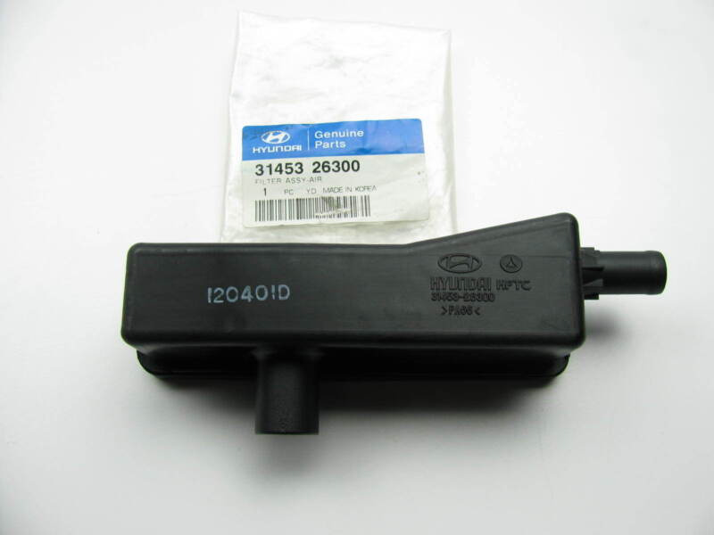 Genuine Hyundai 31310-B8400 Fuel Feed Tube