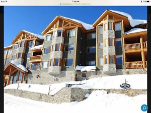 Big White Premium 2 bdrm/2bthrm condo with Private Hot Tub, BBQ