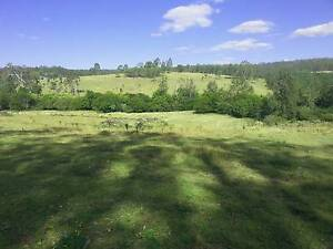 1430 ACRES / 6 TITLES / GRAZING / PLANTATIONS/ NSW Bottle Creek Kyogle Area Preview