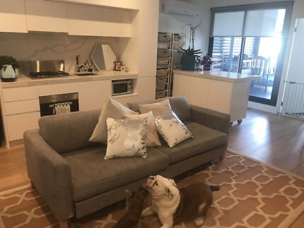 Pet and house sitting URGENT