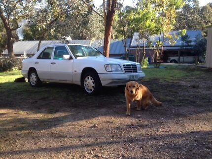 Mercedes benze e220 Glenmaggie Wellington Area Preview