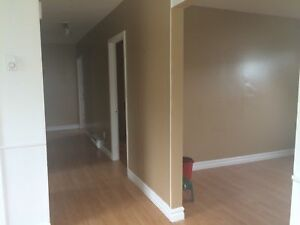 Spacious Two Bedroom Apartment - Drake Cres