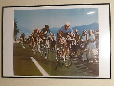 1935 Meteore Bicycle Bike Tour de France Sport Vintage Poster Repo FREE S//H