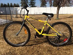 """Raleigh Tracker  24 """"  youth"""