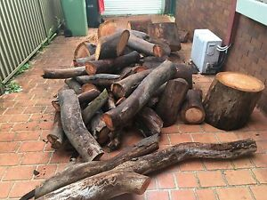 Firewood western suburbs Sydney Strathfield Strathfield Area Preview