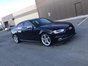 AUDI S4 IMMACULATE CONDITION RARE COLOR COMBO