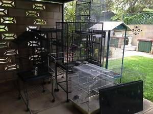 Various sized bird cages Blair Athol Port Adelaide Area Preview