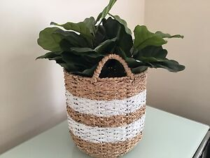 Woven Basket Hendra Brisbane North East Preview