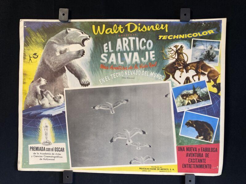1958~ WALT DISNEY- Wild Wilderness ~ Original Mexican Lobby Card~ L@@K~