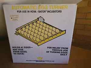 Automatic egg Turner Wollongong Wollongong Area Preview