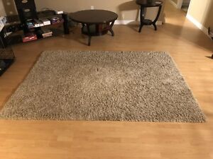 Soft shag area rug 7 x 5