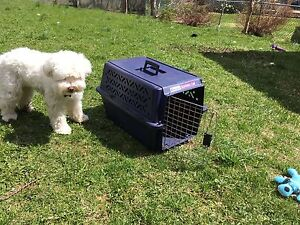 Pet mate kennel cab for sale