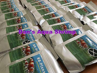Genchem No Planaria Shrimp Safe Planaria Hydra Killer Shrimp Fish  Planted Tank