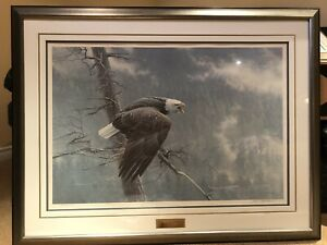 Robert Bateman The Air The Forest....... S//N Limited Edition With Certificate
