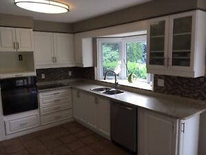 White Kitchen Cabinets and Countertop