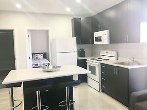 Room for rent basement apartment completely furnished