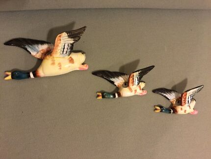 Retro Vintage Wall Flying Ducks 1950s Kitsch Surry Hills Inner Sydney Preview