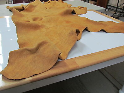 """58""""X 28"""" NATIVE AMERICAN TANNED HIDE COMMERCIAL WAY"""