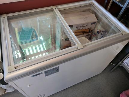 Mid Size Commercial Freezer